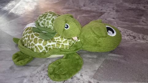 Sköldpaddsbarn och mor